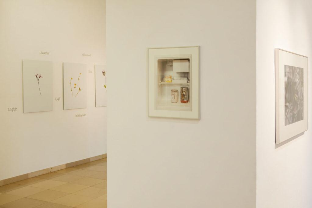 Ausstellungsansicht Ursulinenhof Serie fridge guide von Renate Billensteiner Bild 03